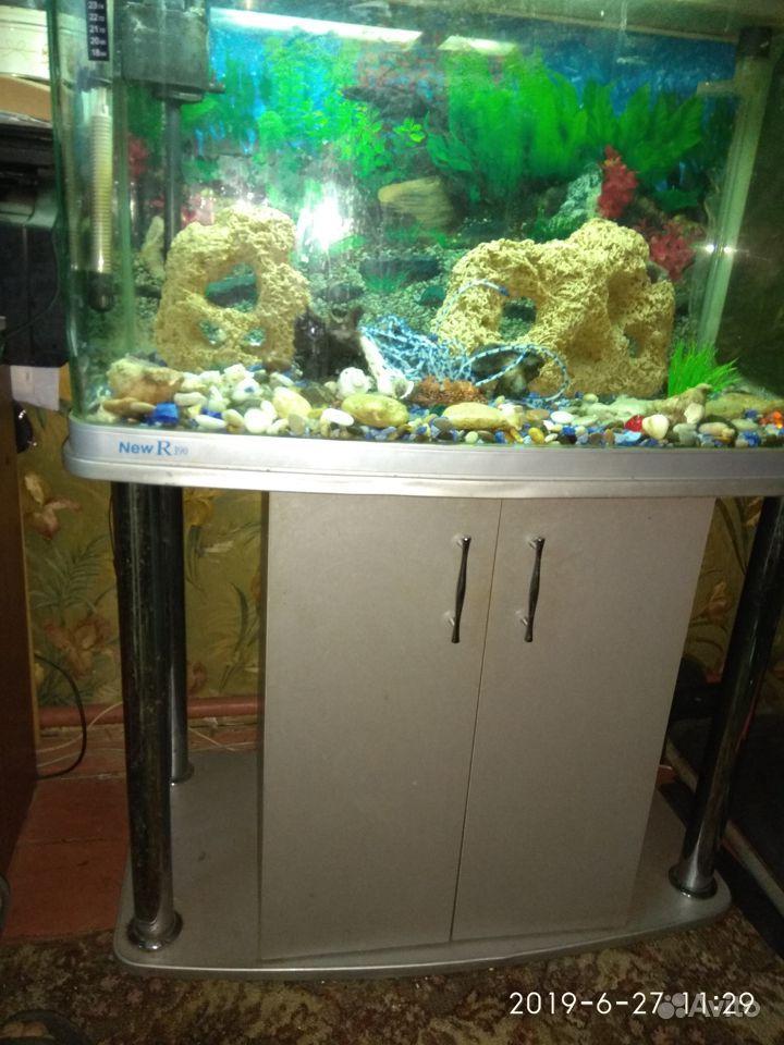 Продается аквариум купить на Зозу.ру - фотография № 1