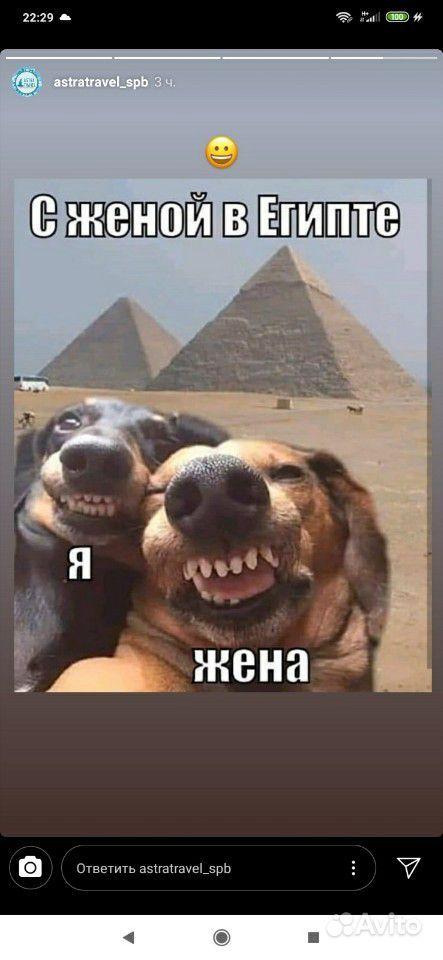 Ультразвуковая чистка зубов собакам купить на Вуёк.ру - фотография № 4