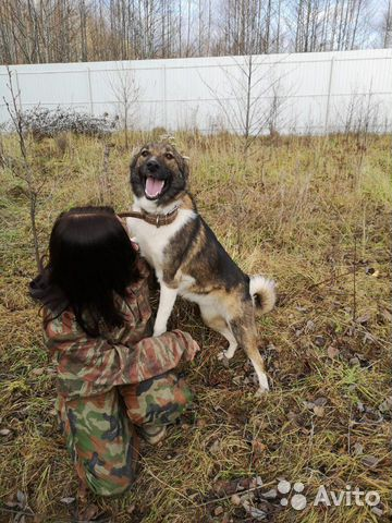 Она ждет вас купить на Зозу.ру - фотография № 3