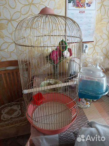 Клетка для попугая  89245763199 купить 2