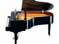 Рояль акустический Becker GP-01AA-168 с доставкой